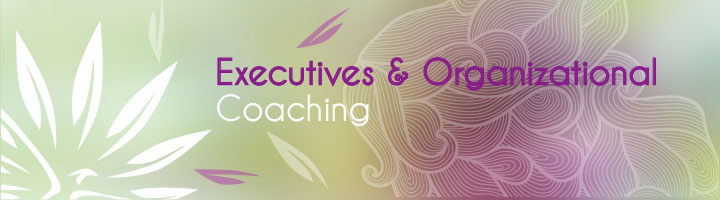 ExecutivesOrganizationalCoaching200x720px